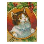 Vintage Christmas Cat Postcard