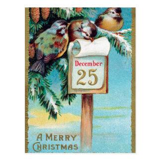 Vintage Christmas Holiday birds postcard