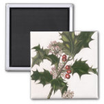 Vintage Christmas, Holly and Berries Magnets