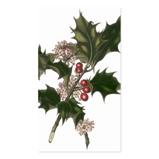 Vintage Christmas Holly Plant with Red Berries Business Card Template