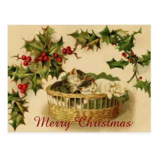 Vintage Christmas Kittens sleeping with Berries Postcard