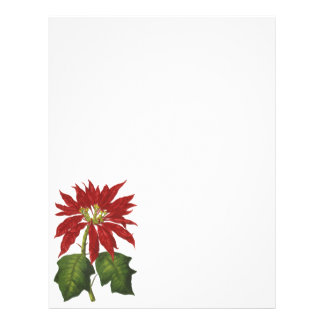 Vintage Christmas, Red Poinsettia Winter Plant 21.5 Cm X 28 Cm Flyer