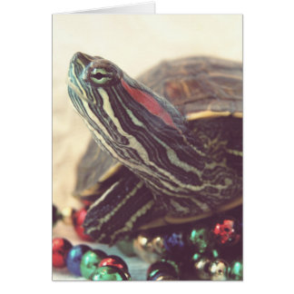 Vintage Christmas Turtle Card