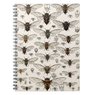 Vintage Cicadas Illustration Spiral Notebook