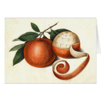 Vintage Citrus Fruit - Antique Chinese Oranges Card