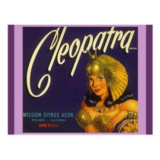 Vintage Cleopatra Produce Crate Labeling Postcards