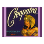 Vintage Cleopatra Produce Crate Labelling Postcard