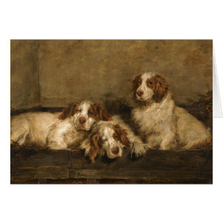 Vintage - Clumber Spaniel Dogs, Card