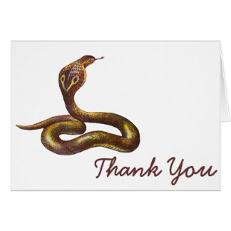 Vintage Cobra Snake Illustration Cards
