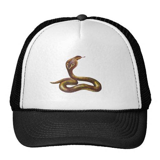 Vintage Cobra Snake Illustration Hat