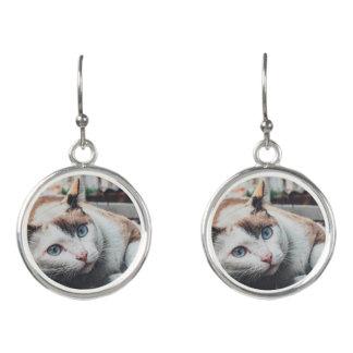 Vintage Colors Cat Earrings