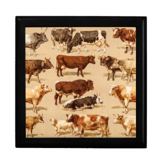 Vintage Cow Calf Bull Dairy Cows Farm Illustration Gift Box