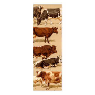Vintage Cow Calf Bull Dairy Cows Farm Illustration Pack Of Skinny Business Cards