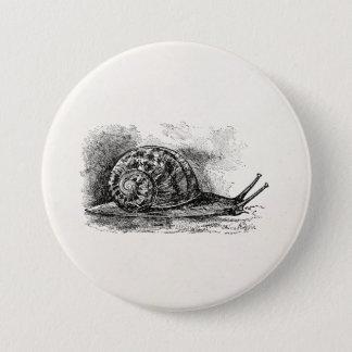 Vintage Crawling Snail Antique Template 7.5 Cm Round Badge