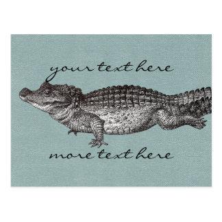 Vintage Crocodile Post Card