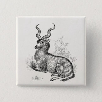 Vintage Curly Horn Gazelle Antelope Personalized 15 Cm Square Badge