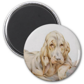 Vintage Cute Bloodhounds, Puppy Dogs by EJ Detmold Fridge Magnets
