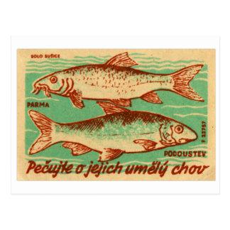 Vintage Czech Czechlovalkia Fish Match Box Label Postcard