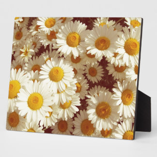 Vintage daisies plaque