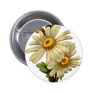 Vintage Daisy Pinback Buttons