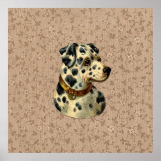 Vintage Dalmation Dog Print