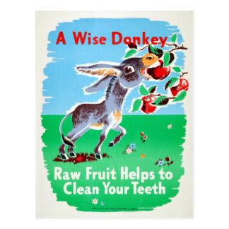 Vintage Dental Raw Fruit Clean Teeth Health Donkey Postcard