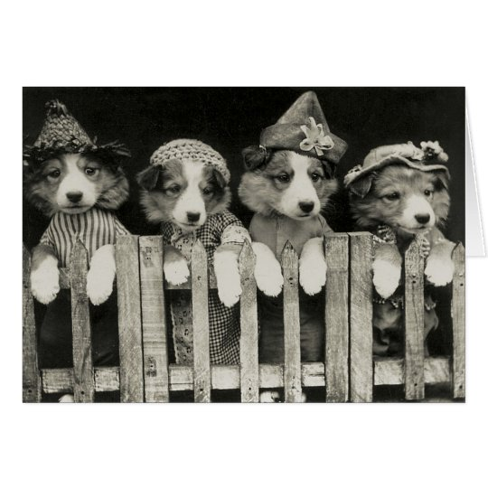 Vintage Dog Greeting Card