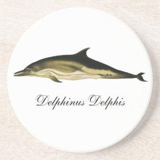 Vintage Dolphin Delphinus Delphis, Marine Mammals Drink Coaster