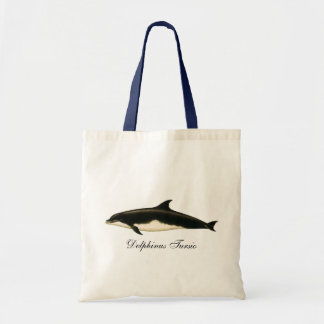 Vintage Dolphins Delphinus Tursio, Marine Mammals