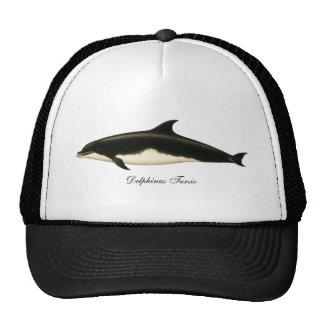 Vintage Dolphins Delphinus Tursio, Marine Mammals Cap