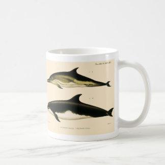 Vintage Dolphins, Marine Animals and Mammals Coffee Mug