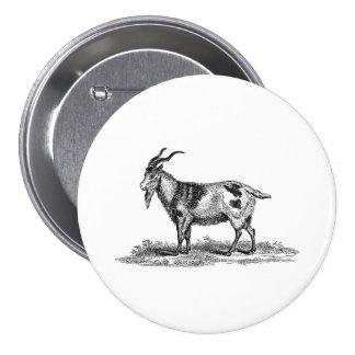 Vintage Domestic Goat Illustration -1800's Goats 7.5 Cm Round Badge