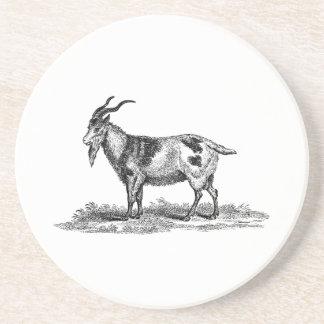 Vintage Domestic Goat Illustration -1800's Goats Coaster