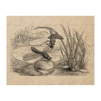 Vintage Dragonfly Antique Dragonflies Parchment Wood Print