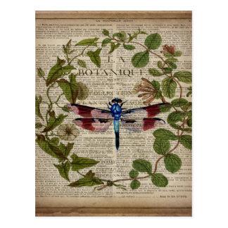 vintage dragonfly french botanical art print postcard