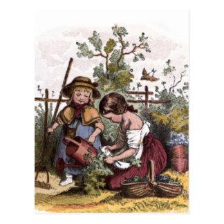 Vintage Drawing: Girls in the Veggie Garden Postcard