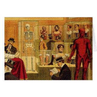 Vintage Drawing of Anatomy Museum - Greeting Card