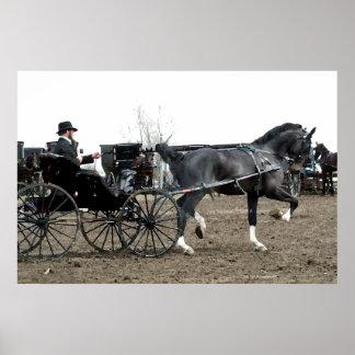 Vintage Driving Horse Poster