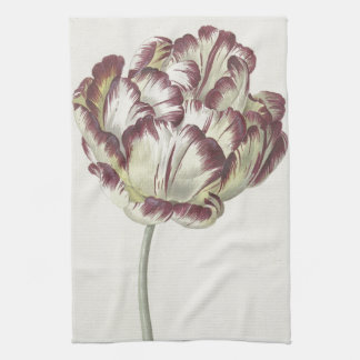 Vintage Dutch Floral Fine Art: White and Red Tulip Tea Towel
