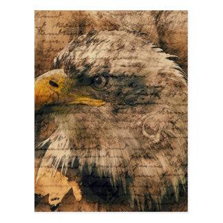 Vintage Eagle Postcard