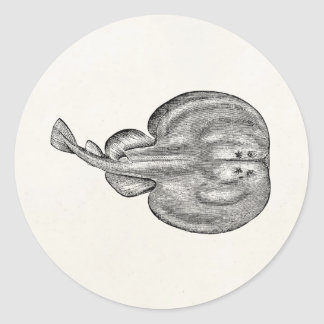 Vintage Electric Ray Stringray Template Blank Round Sticker