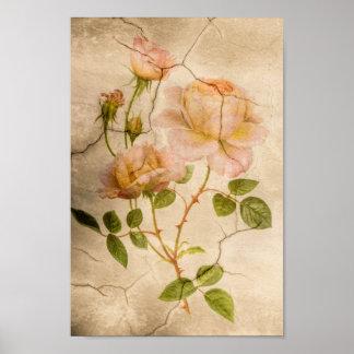 Vintage Elegant Shabby Chic Pale Pink Roses Poster
