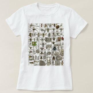 Vintage Entomology Shirts