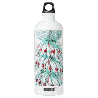 Vintage-Ernst-Haeckels-Kunstformen-Blue Jelly Water Bottle