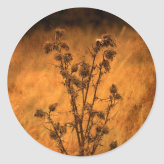 Vintage Fields Round Sticker