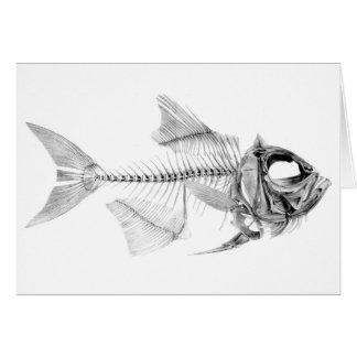 Vintage fish skeleton etching card