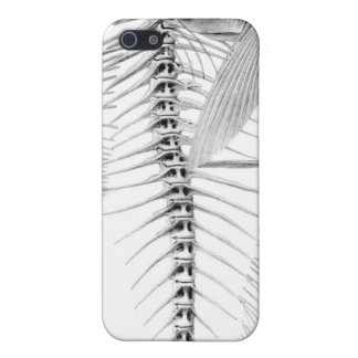 Vintage fish skeleton etching iPhone 5 cases
