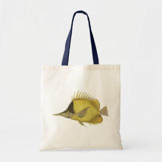 Vintage Fish, Yellow Tropical Chelmon Longirostris