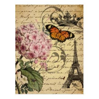 Vintage floral botanical art hydrangea Paris Postcard