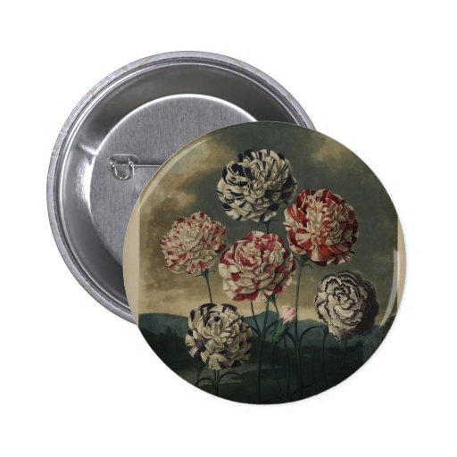 Vintage Floral Carnation Painting Pinback Button